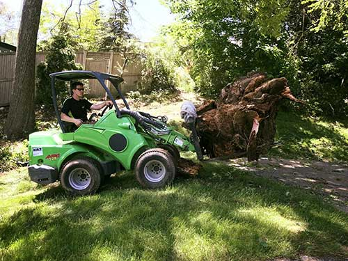 Stump Removal Company St. Louis