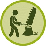 Tree Removal Service in St. Louis
